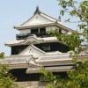 松山市内で頼れる引越し業者を探すためのプチ情報