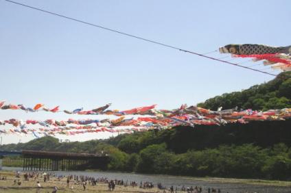 相模川の鯉のぼり