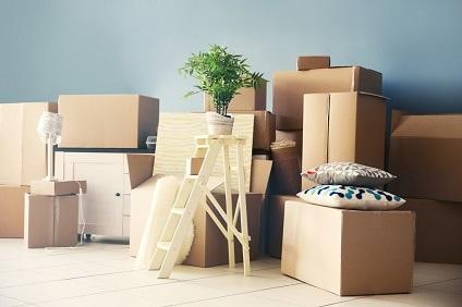 梱包された荷物と植木