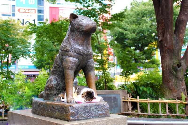 渋谷駅前にある忠犬ハチ公