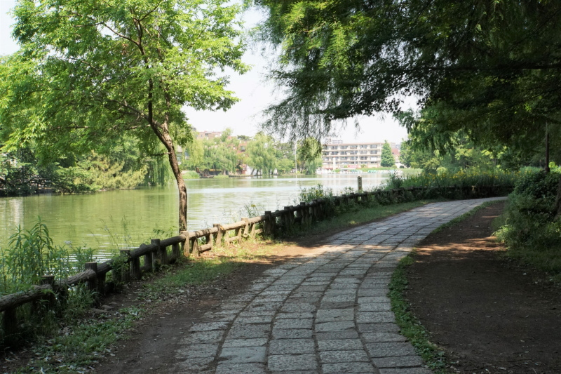 練馬区石神井公園