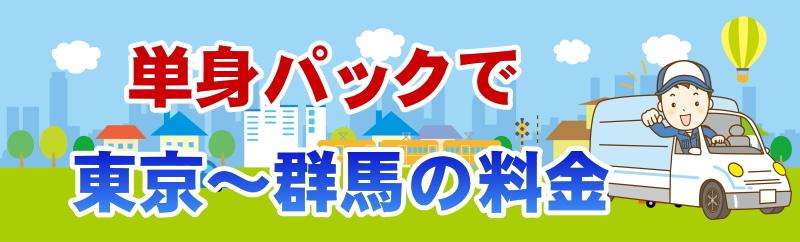 単身パックの東京と群馬の間の利用料金